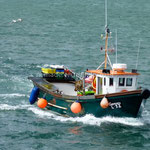 Un pêcheur rentre à Ballyvaughan
