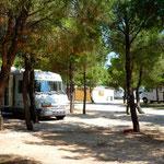 Au camping Marina à Lozovac