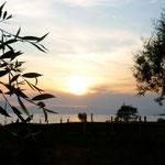 coucher de soleil sur le lac Shkodra