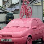 auto rose...