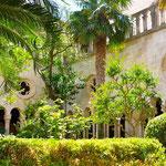Dubrovnik: Cloître du monastère des Franciscains