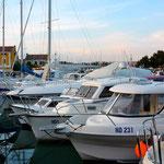 Le port de Novigrad