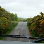 Chemin d'accès à Ballycarbery Castle