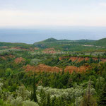 La terre rouge donne au paysage des airs de Roussillon