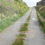 L'herbe qui pousse montre que ces routes ne sont pas très fréquentées