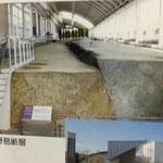 淡路島 北淡震災記念公園です。