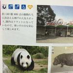 神戸市 神戸市立王子動物園です。