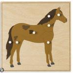 L1 Paard
