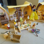EI74 Sneeuwwitje en dwergenhuis