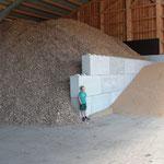 Trennung von Getreide und Hackschnitzel
