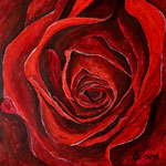 Mutters Rose - Acryl 50x50 (2013)