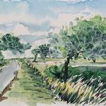 Windflüchter bei Oldenswort – Aquarell
