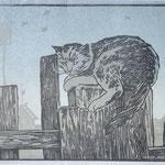 Кот, цв. линогравюра
