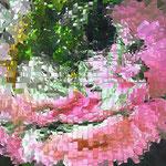 I Asia II (100 x 85 cm), copyright © 2011 Ilsabé von Dallwitz