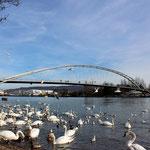 Rheinufer Huningue
