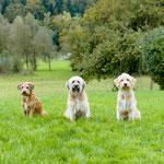 Drei Generationen: Oma Nuria, Mama Gossip, Tochter Bente