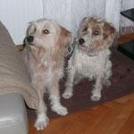 Bente und Arny