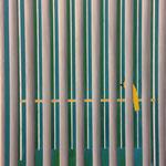depressieve kanarie / olie / potlood / doek / 100x80 / 2018