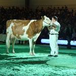 Swiss'Expo 2012 - Schuwey Classic Roxy bei der Championwahl