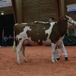 Junior Bulle Expo 2010 - 2. Rang Schuwey Classic Roxy-ET
