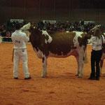 Junior Bulle Expo 2010 - Schuwey Classic Roxy-ET