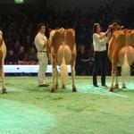 Swiss'Expo 2012 - Schuwey Classic Roxy bei der Schöneuterwahl