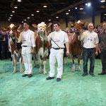 Die Red-Holstein Siegerinnen der Swiss'Expo 2012