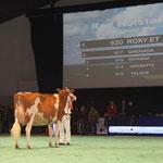 Swiss'Expo 2012 - Schuwey  Classic Roxy 1. Rang