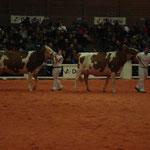 Junior Bulle Expo 2010 - Championwahl (Rihanna + Roxy)
