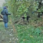 Ann Bachmann vom Igelzentrum Zürich mit Igelspürhund Jay
