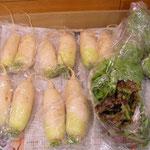 N家の新鮮野菜