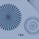Auch bei 500mm kann das Tamron seine optischen Qualitäten unter Beweis stellen. Bei Blende 8 hat der Autofokus offensichtlich nicht richtig gegriffen.