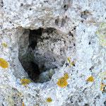 Le trou par où s'engouffre le vent- La croix qui corne- Cambron