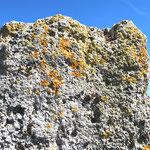 Fontaine-sur-Somme: le haut du fût de la croix