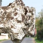 Bras de la croix en tuf de Millencourt-en-Ponthieu