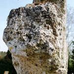 Bout du bras de la croix en tuf de Millencourt-en-Ponthieu