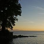 der Bodensee im Abendlicht