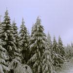 Winter in Oberfranken
