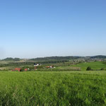 Blick von Notzenhaus über das Tannauer Becken (Weinreich 2014)