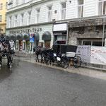 Wien - Kleine Rundfahrt 65.-- Euro - große Rundfahrt 85.-- Euro
