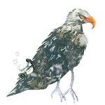 The eagl