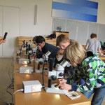 Arbeiten am Mikroskop