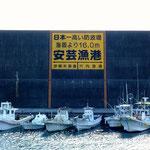 安芸漁港の防波堤 写真からも判る通り、日本一高い防波堤。