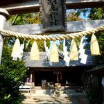 安芸市の杉尾神社 シンプルながらとても風情ある趣でした。