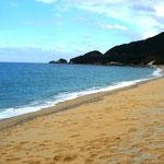 日本一のウミガメの産卵地の永田いなか浜