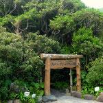 志戸子ガジュマル公園の正門 ガジュマルやアコウを観覧する遊歩道がある。