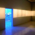 名和晃平展の展示風景