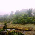 花之江河の風景