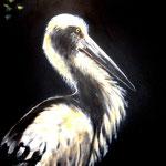 Storch - Acryl auf LW/KR, 40 x 60 cm