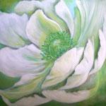weiße Anemone - Acryl auf LW/KR, 50 x 50 cm